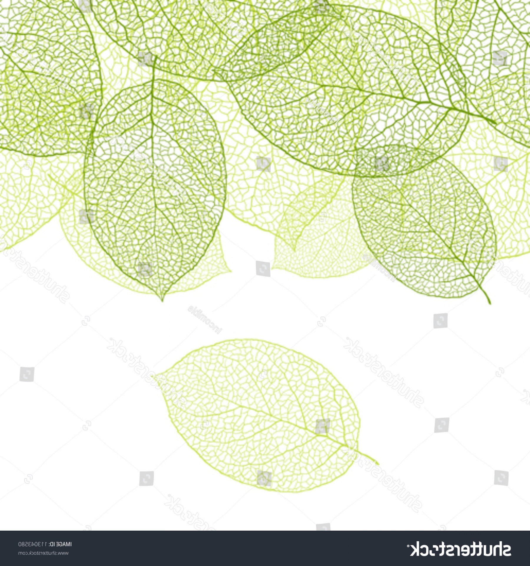 Leaf Background Vector: Fresh Green Leaves Background Vector Illustration