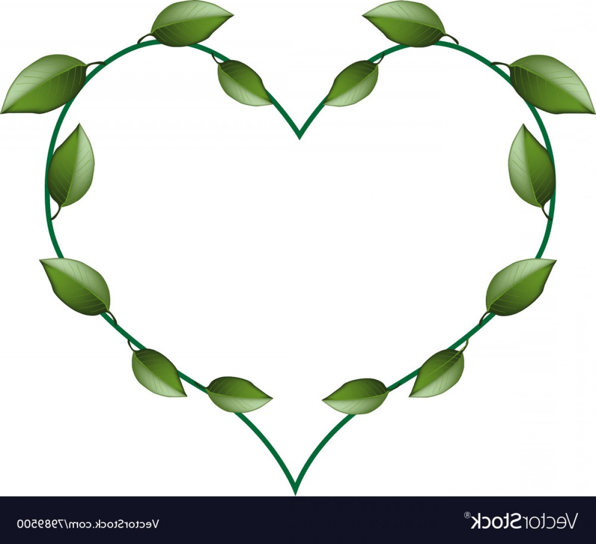Green Vine Vector: Fresh Green Vine Leaves In A Beautiful Heart Shape Vector