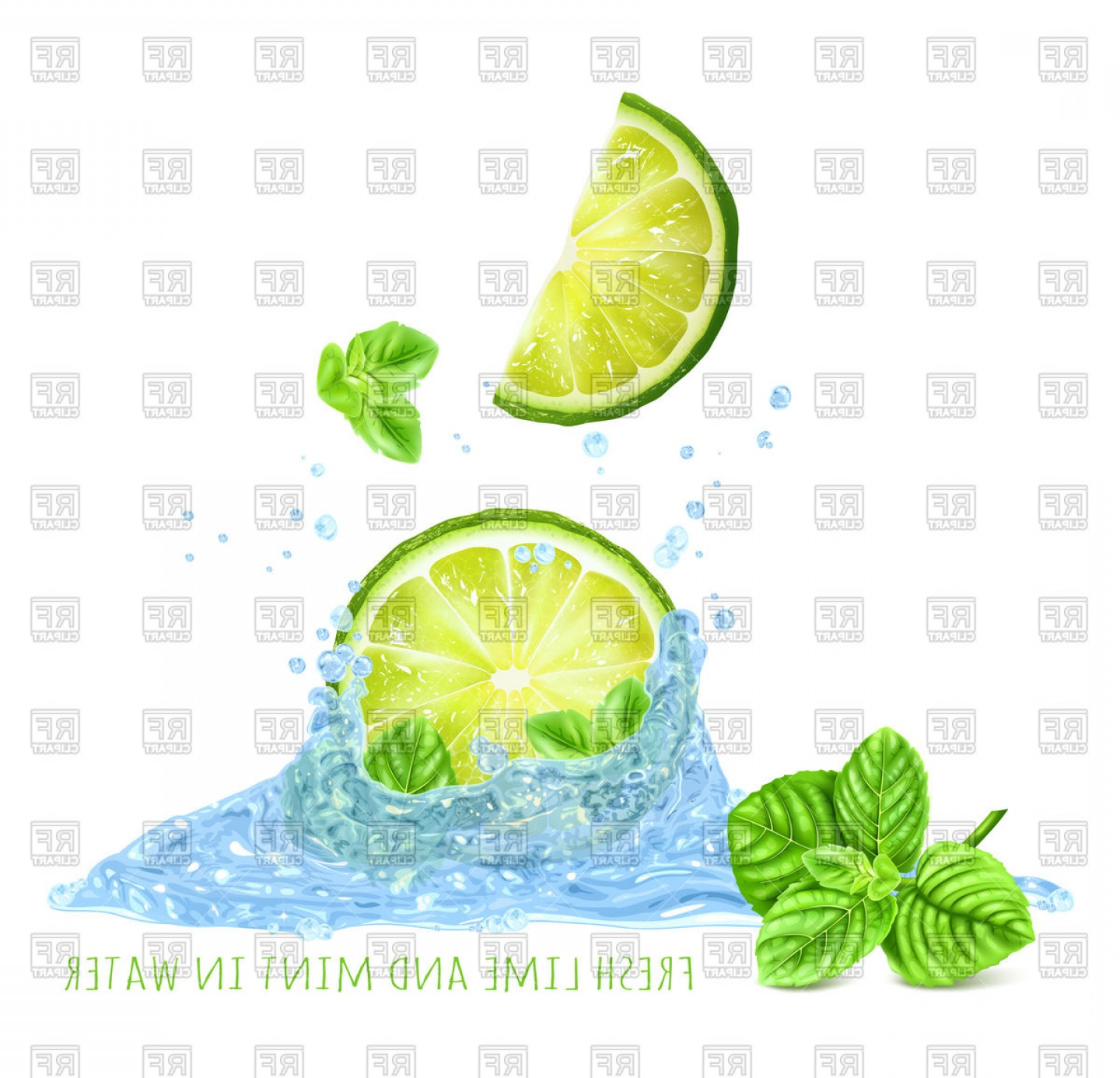 Lime Wedge Vector Art: Fresh Mint And Lime Slice In Water Splash Vector Clipart