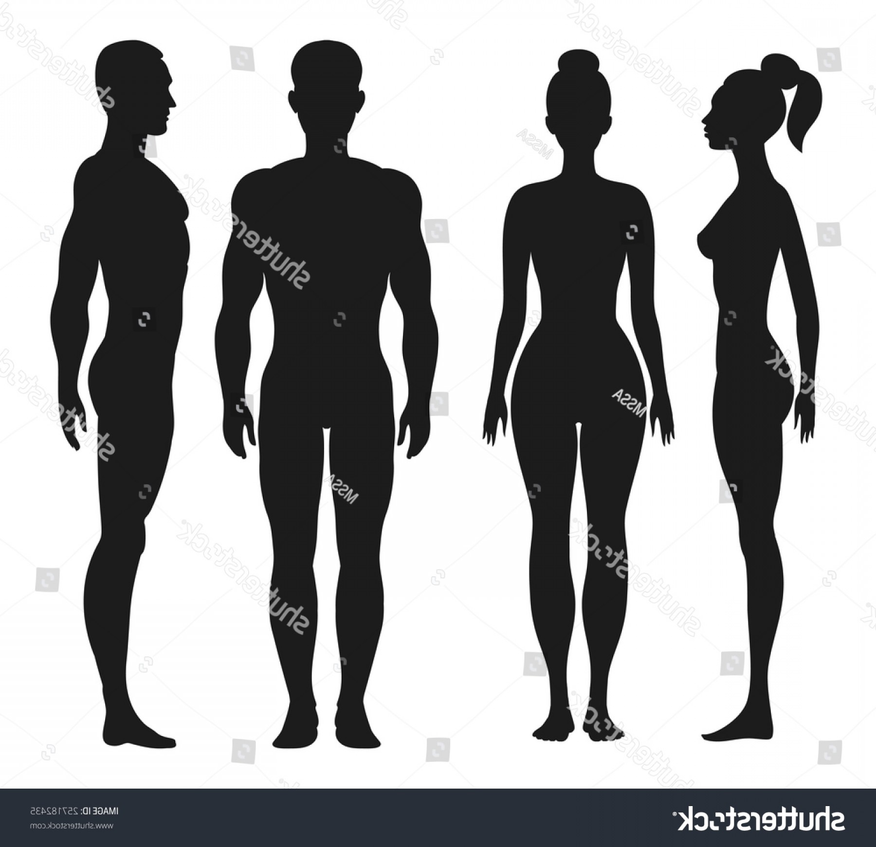 Male Silhouette Vector Art: Front Side View Silhouettes Man Woman