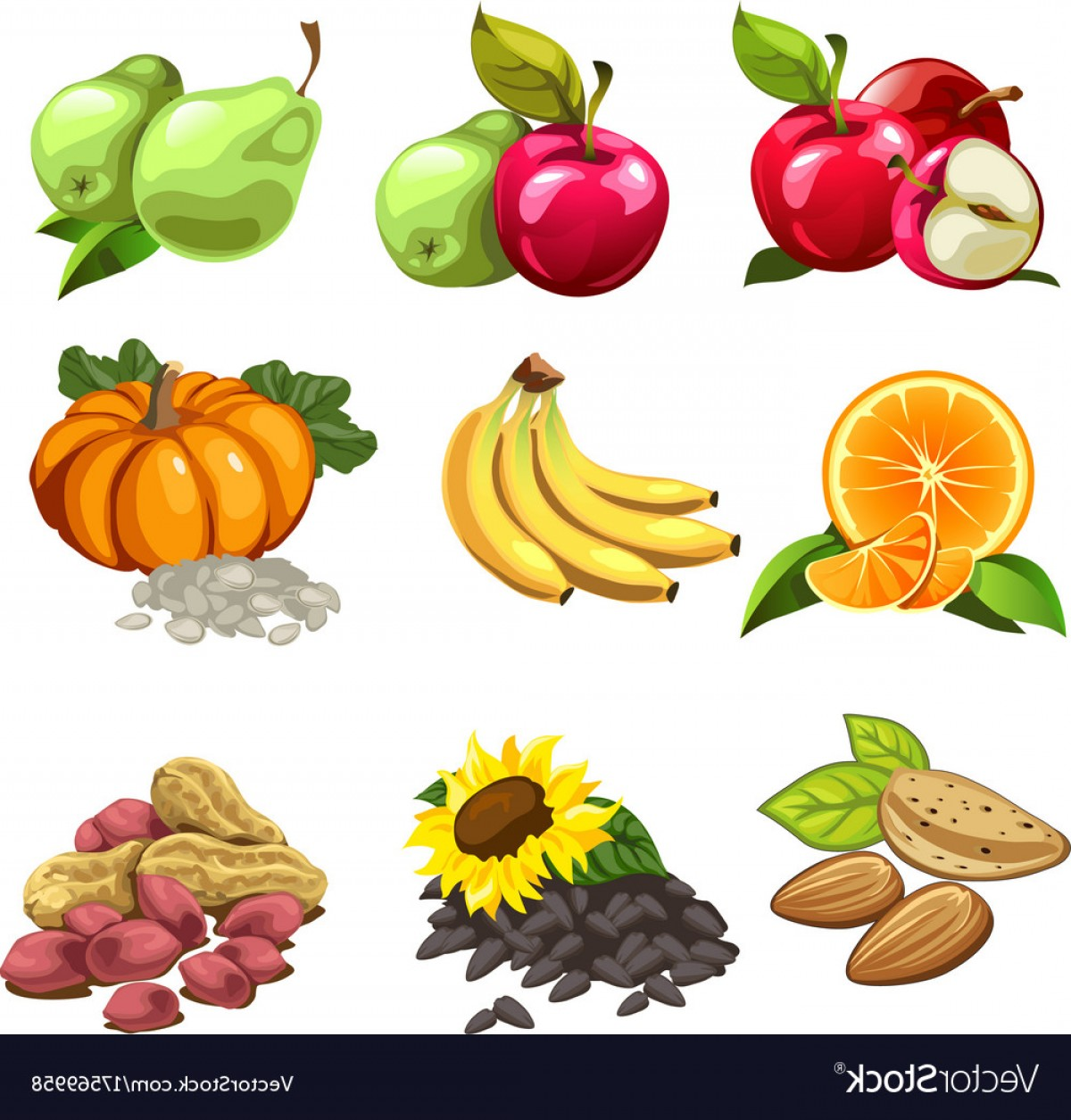 Vector Fruit Vegetable: Fruits Vegetables Nuts Sunflowers Seeds Vector