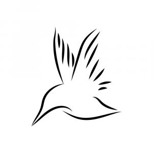 Free Vector Birds On A Line: Free Hand Drawn Vector Bird Illustration