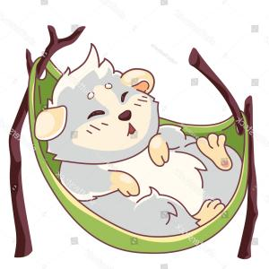 Unicorn Eyes Asleep Vector: Funny Cavy On Hammock Closed Eyes