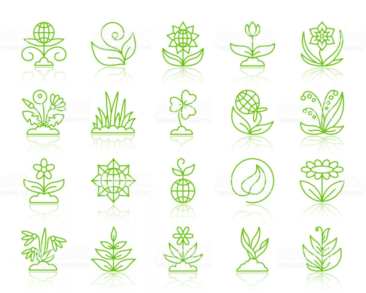 Alfalfa Sprouts Vector: Garden Simple Color Line Icons Vector Set Gm