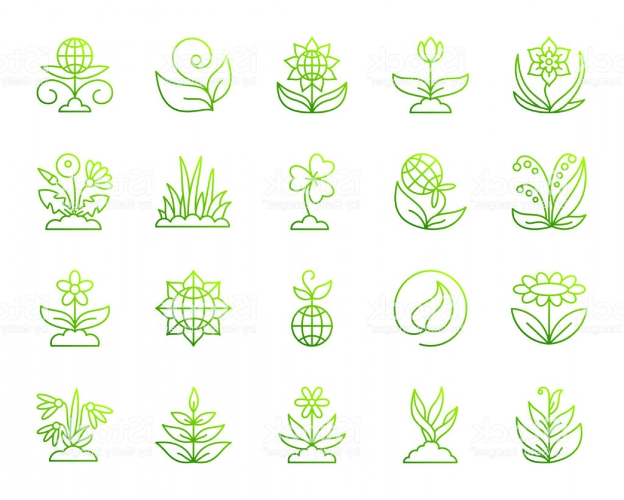 Alfalfa Sprouts Vector: Garden Simple Green Line Icons Vector Set Gm