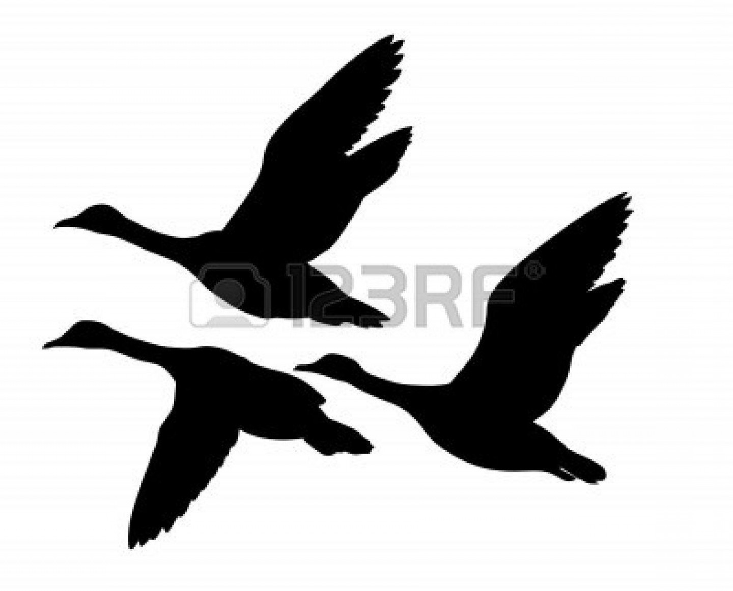 Geese Vector: Geese Flying Clipart Black And White