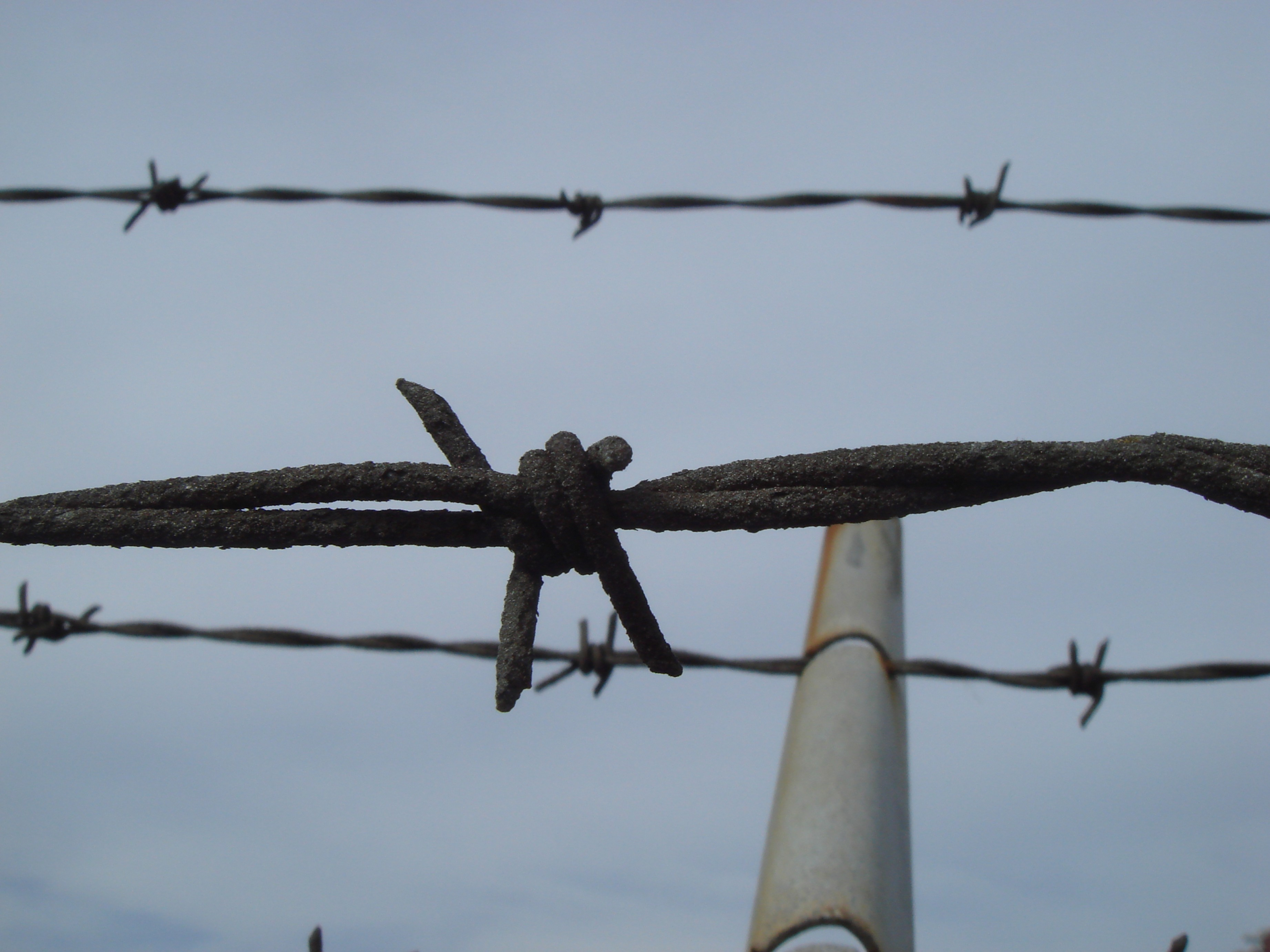 Fence Post Barbed Wire Vector Clip Art: Get Over A Barbed Wire Fence