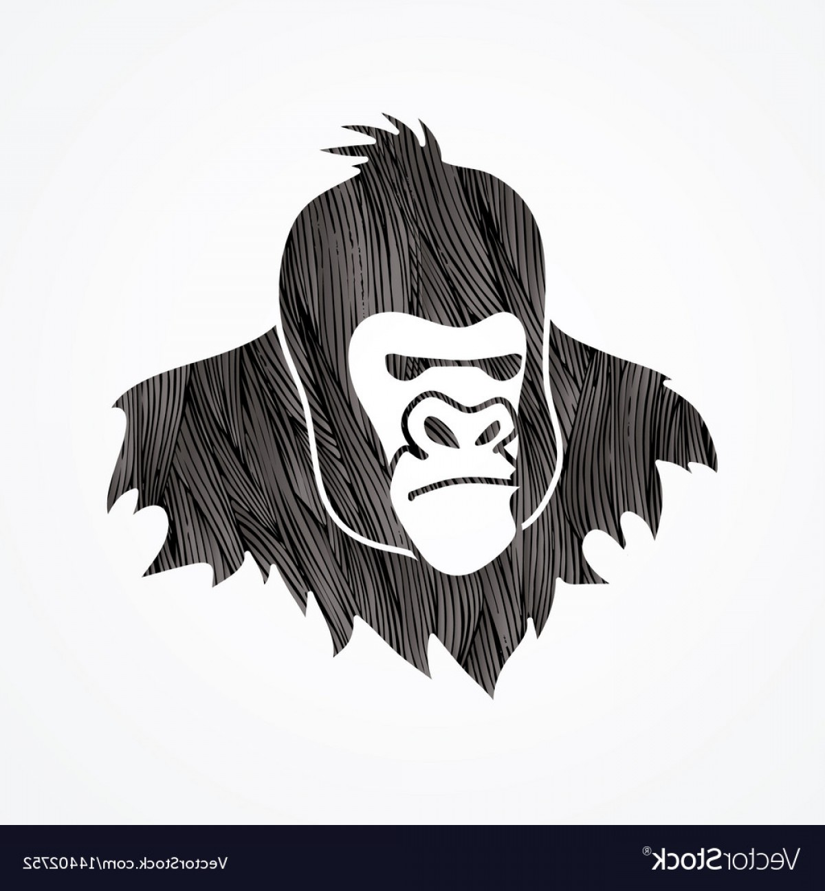 Drawings Of King Kong Vector: Gorilla Head King Kong Face Angry Big Monkey Vector