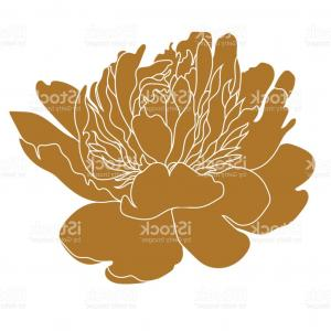 Bud Vector: Abstract Bud Of Peony Flower Vector Clipart