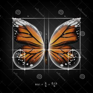 Half Abstract Butterfly Vector: Abstract Green And White Circles Butterfly Vector