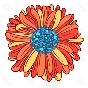 Orange Gerber Daisy Vector: Comfortable Gerber Daisies Vector Background Lady Bug