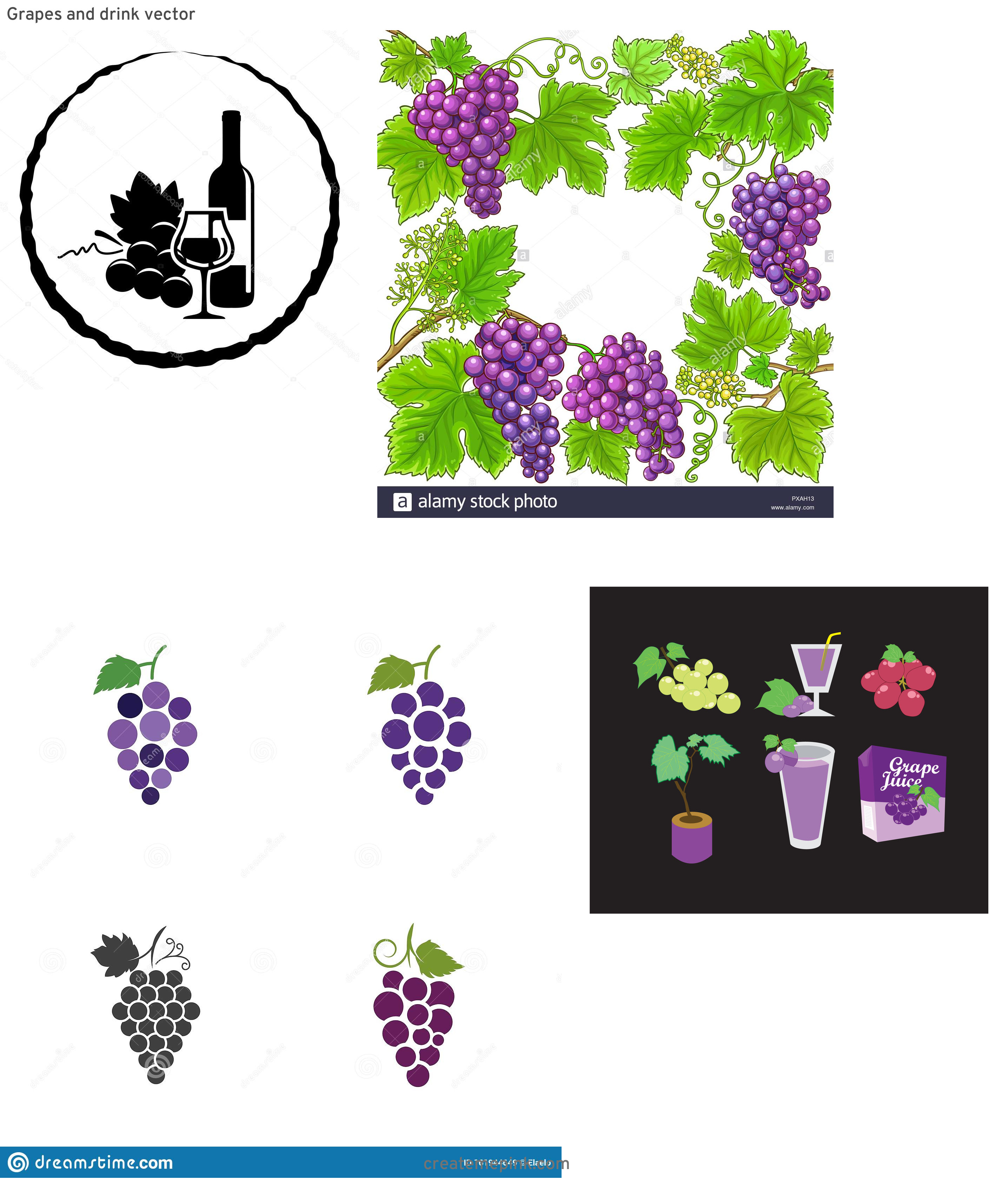 Grapes Vector Art: Grapes And Drink Vector
