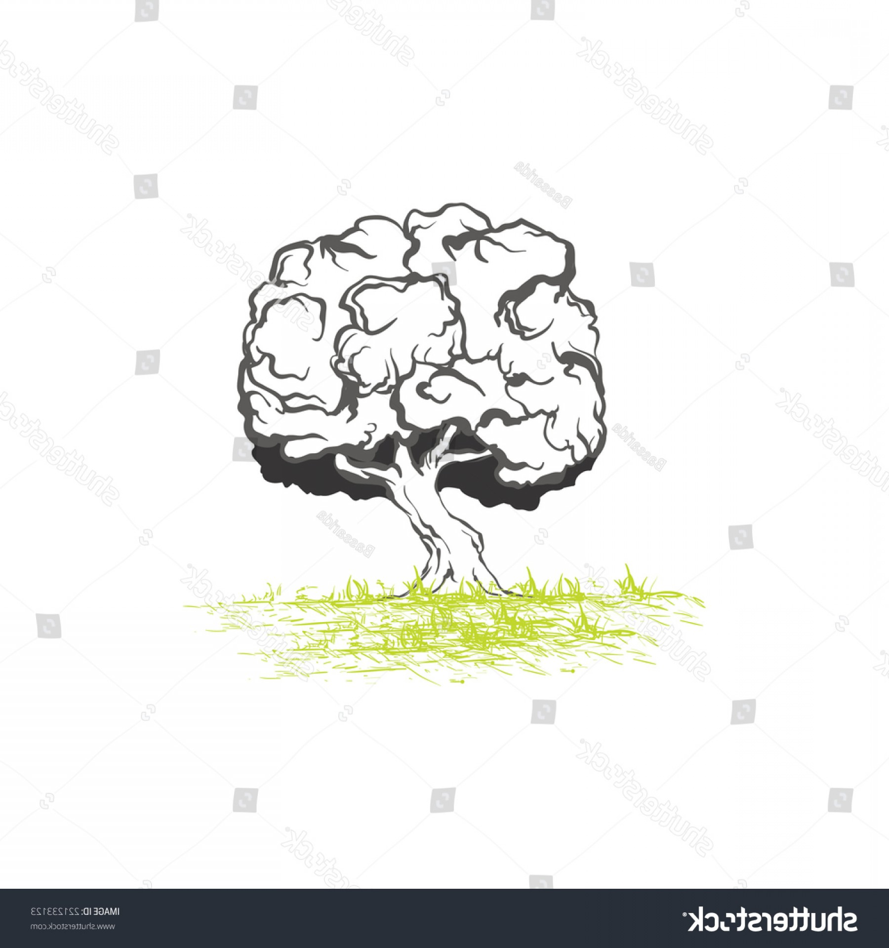 Oak Tree Silhouette Vector Graphics: Graphic Outline Oak Tree Silhouette