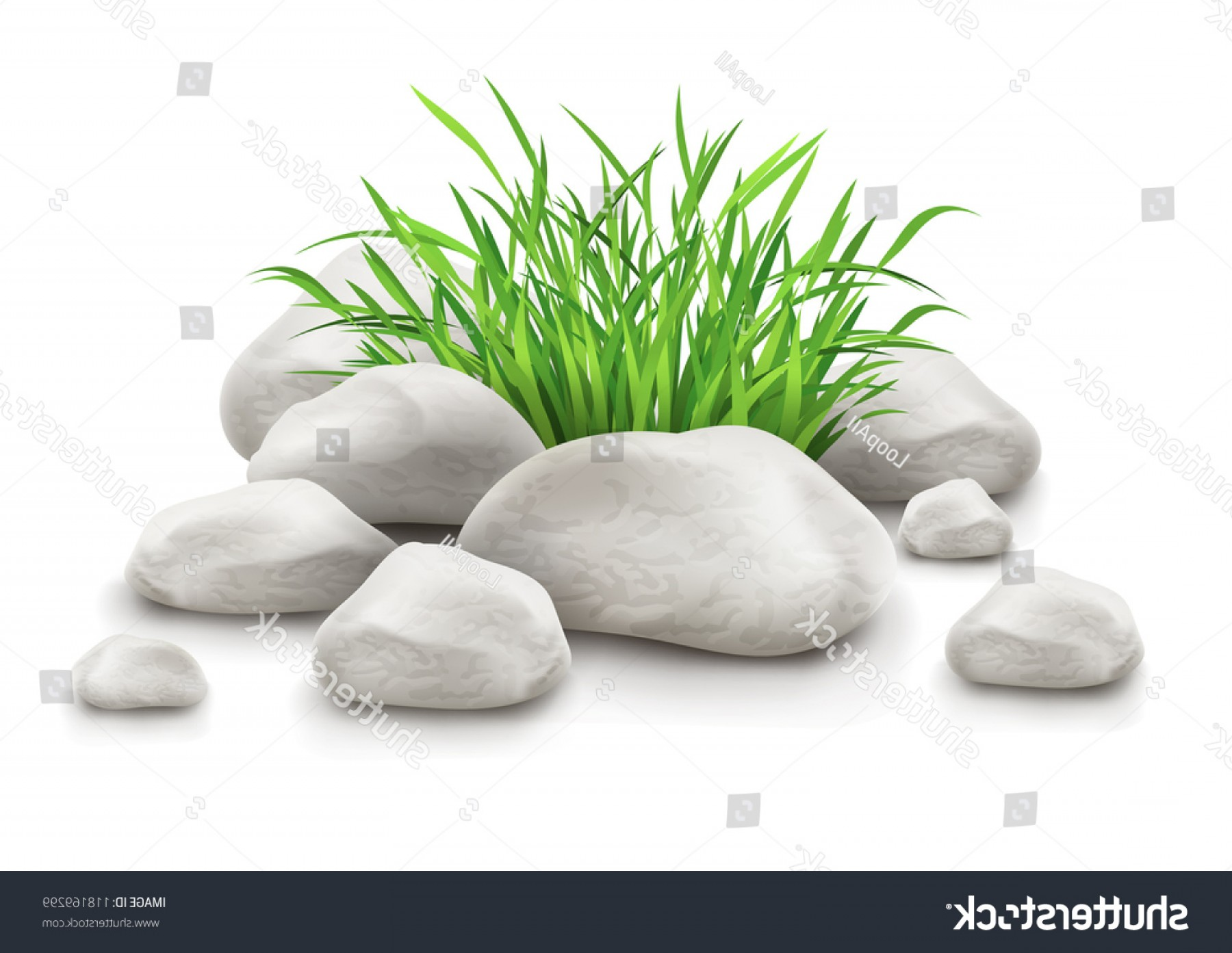 Vector Stone Landscaping: Green Grass Stones Landscape Design Element