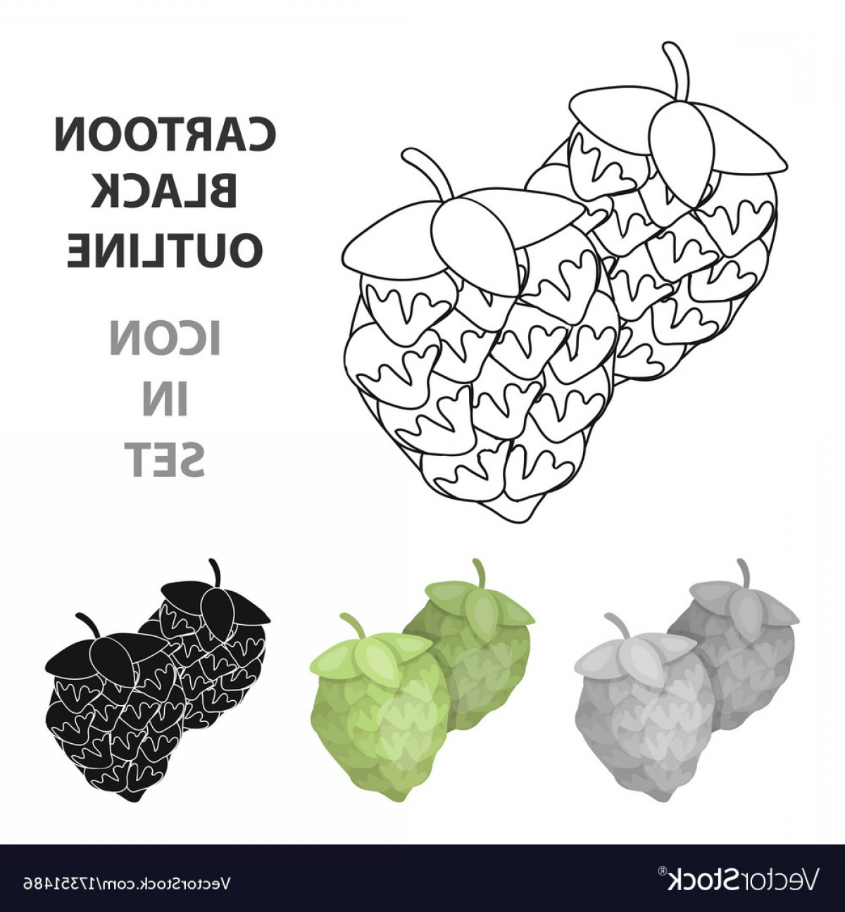 Beer Hops Vector: Green Hops Plant For Brewing Beer The Main Vector