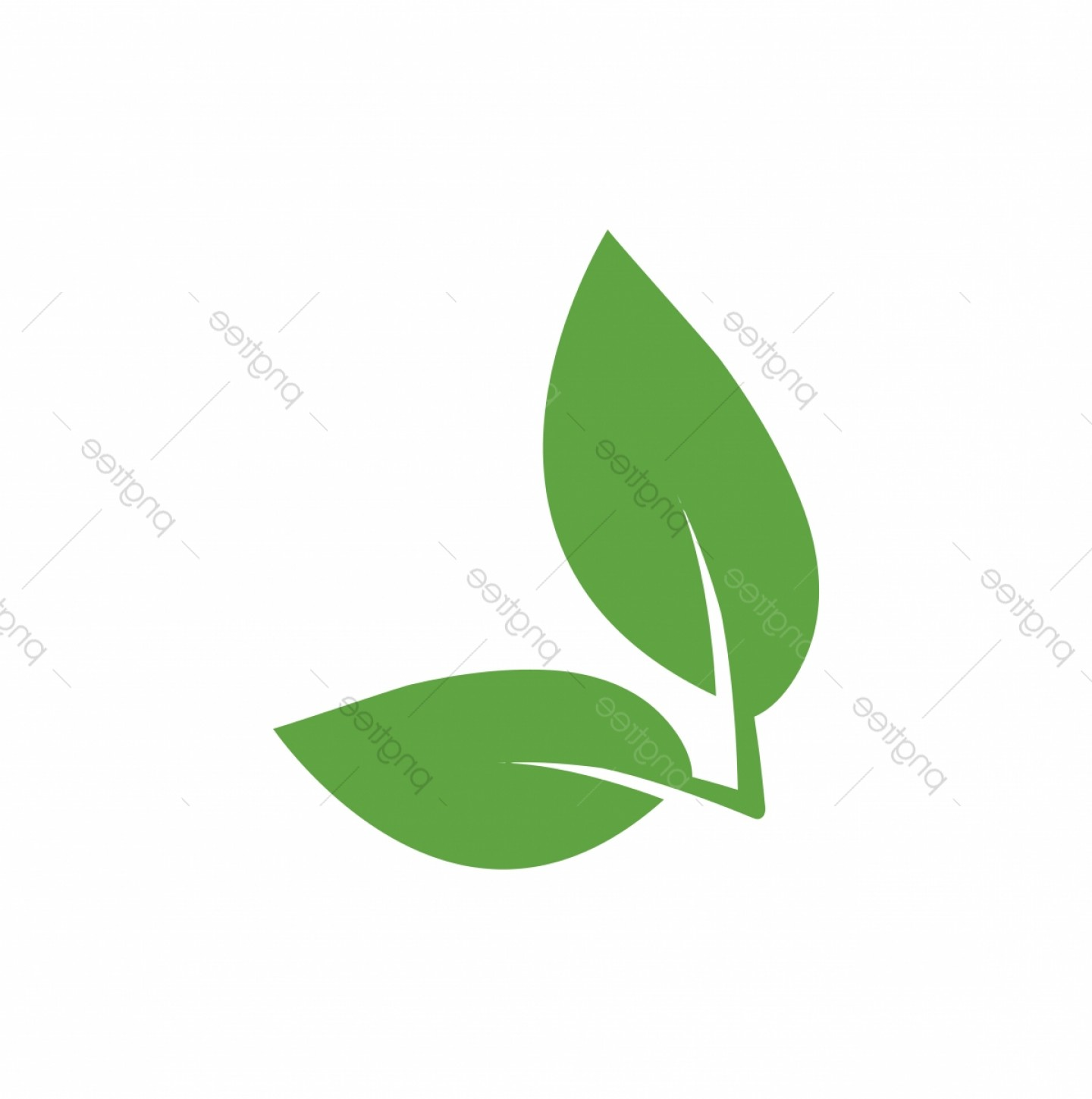 Vector Leaf Graphicd: Green Leaf Icon Graphic Design Template Vector
