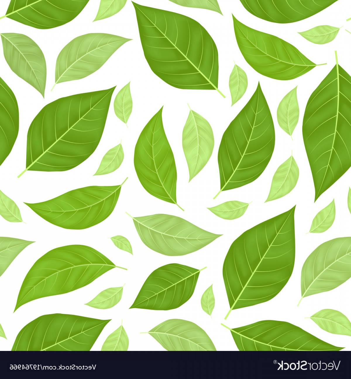 Leaf Background Vector: Green Leaves Seamless Pattern Background Vector