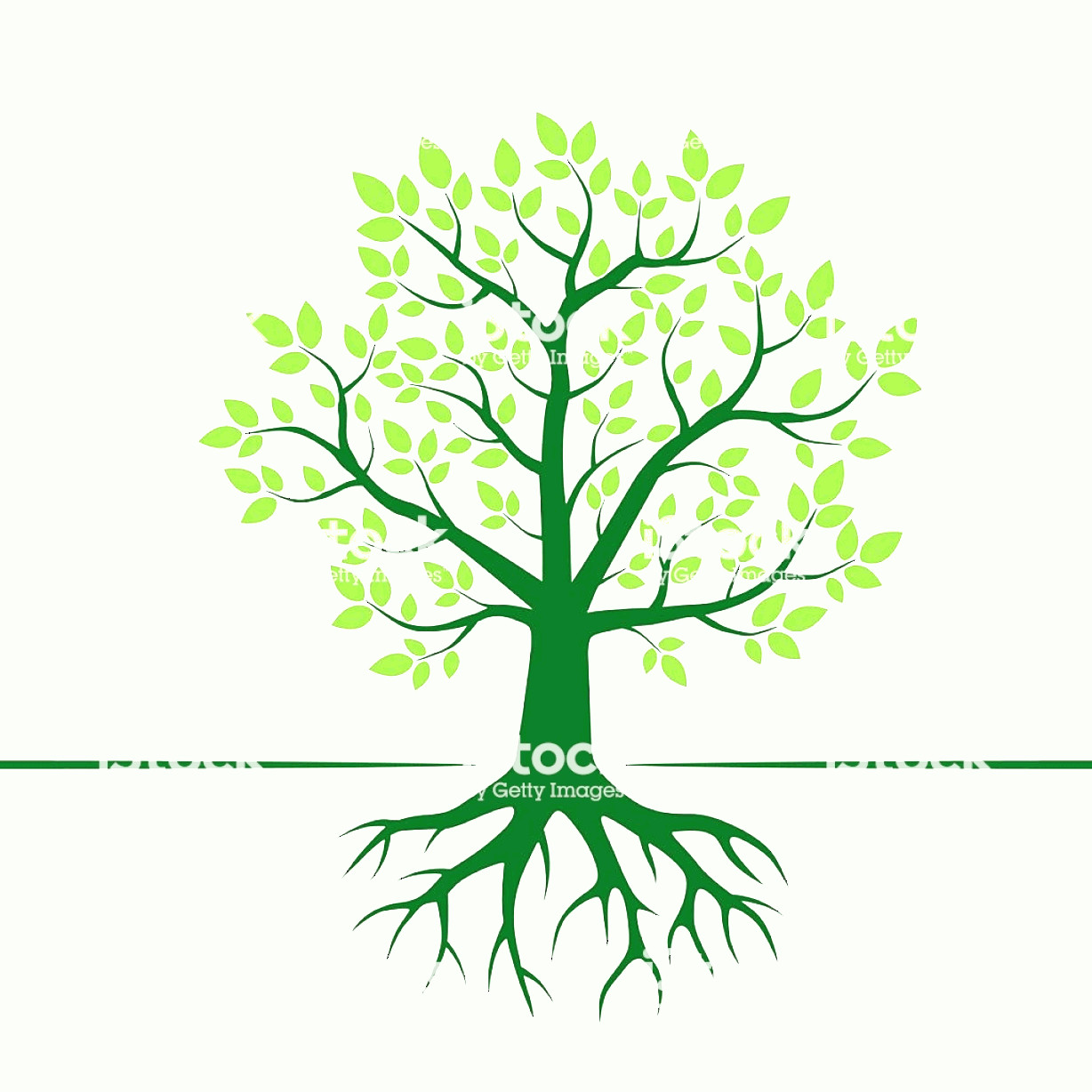 Vector Tree With Roots Drawing: Green Vector Tree And Roots Vector Illustration Gm