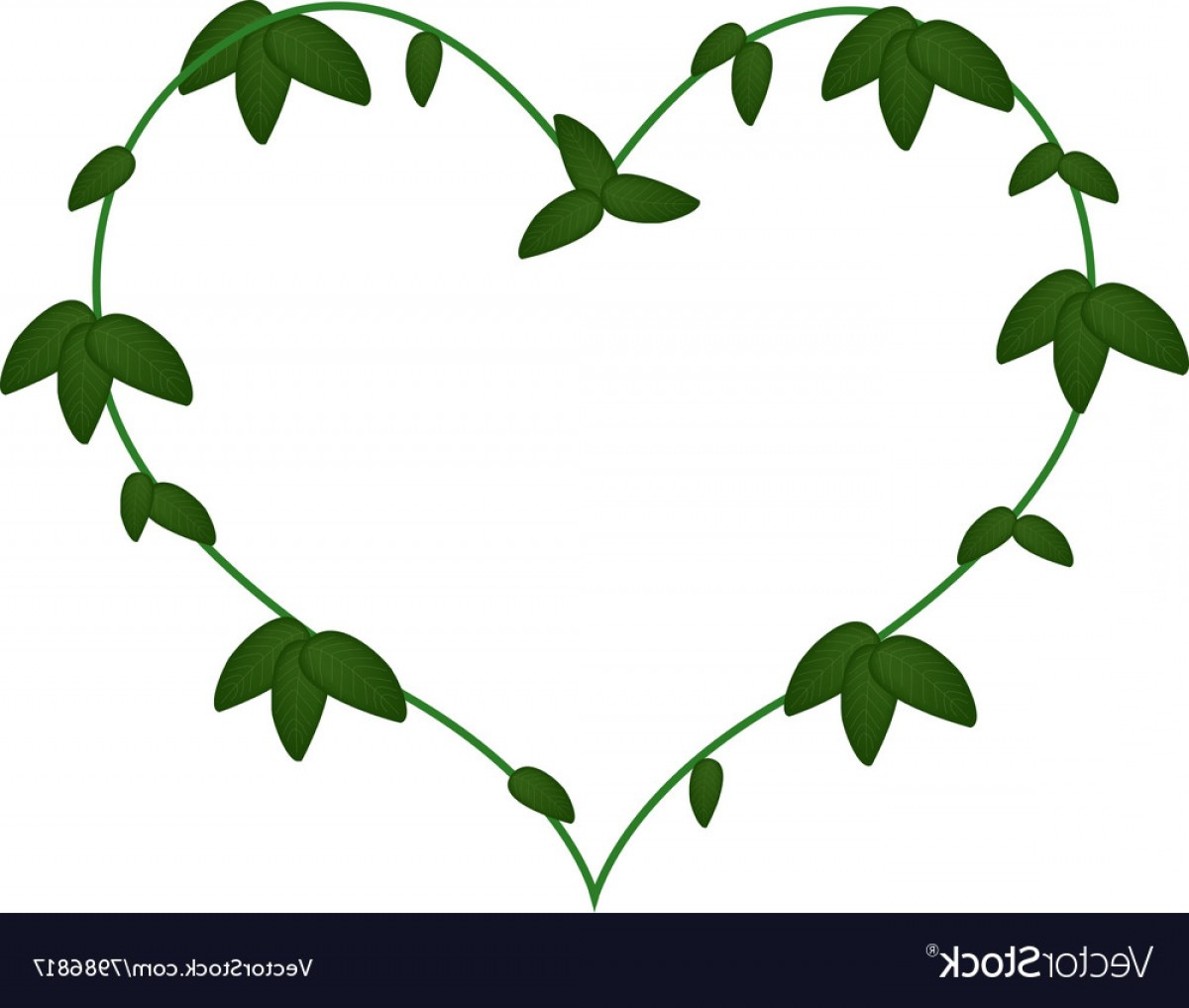 Green Vine Vector: Green Vine Leaves In A Heart Shape Wreath Vector