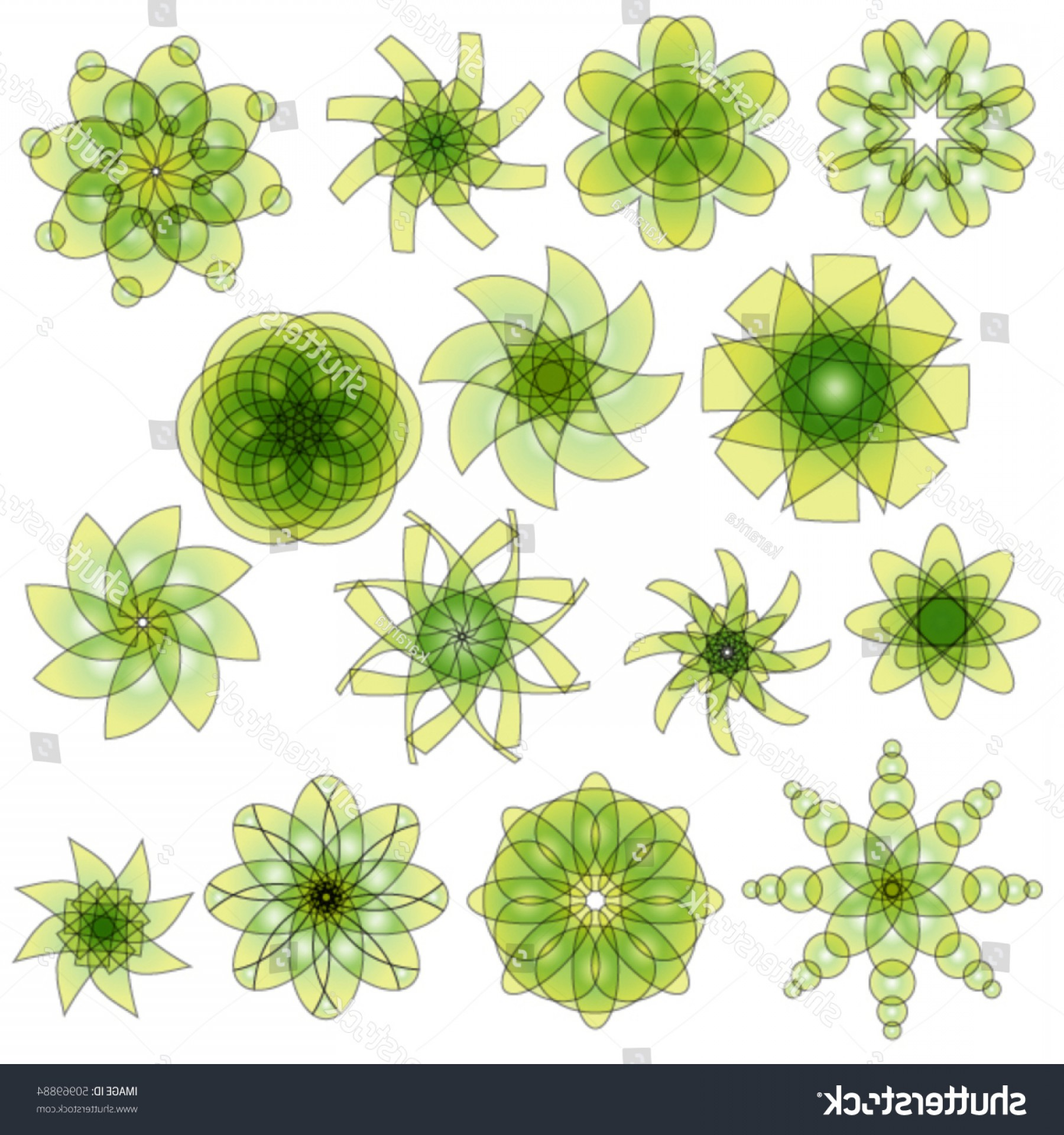 Vector Ornament Sets: Green Yellow Vector Ornament Collection