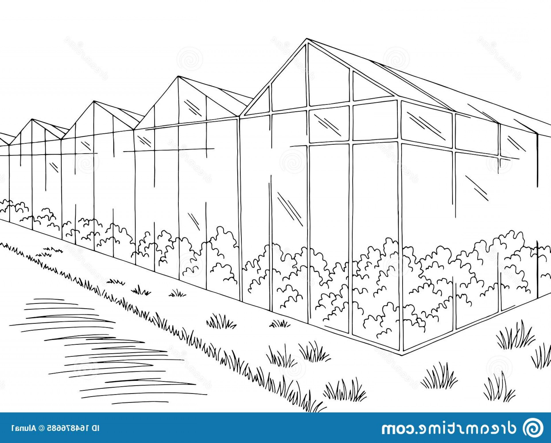 Black And White Vector Greenhouse: Greenhouse Graphic Black White Landscape Sketch Vector Greenhouse Graphic Black White Landscape Sketch Illustration Vector Image