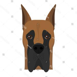 Corgi Vector Multicolor: Great Dane Dog Isolated On White