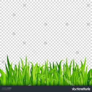 Vector Fields GIF: Green Grass Border On Transparent Background