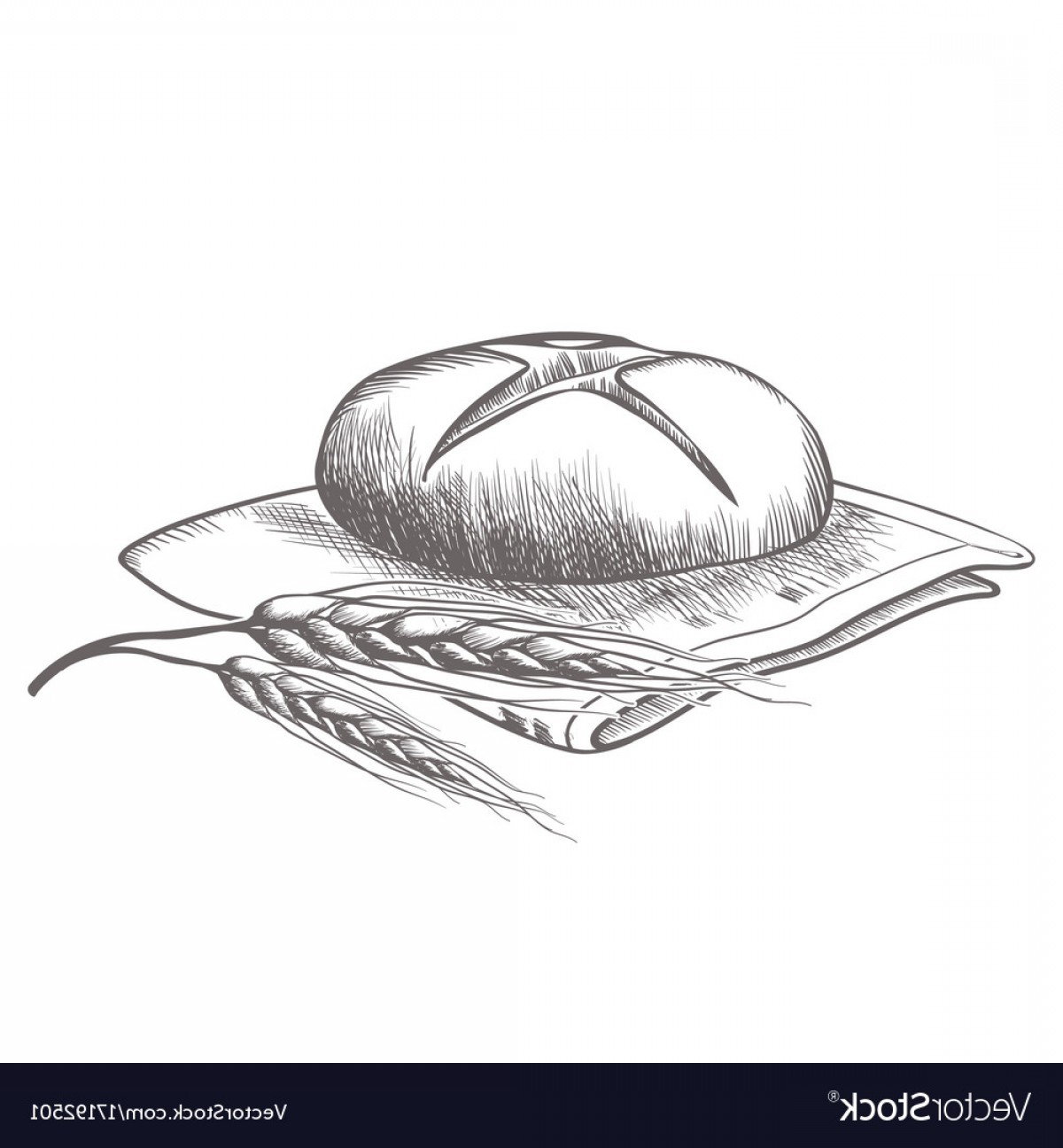 Bread Of Life Vector Art: Hand Drawing Of Round Bread Isolated Vector