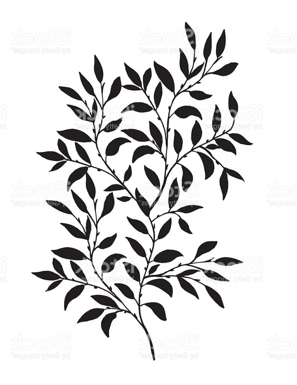 Vector Vine Tree: Hand Drawn Leaves Vine Gm