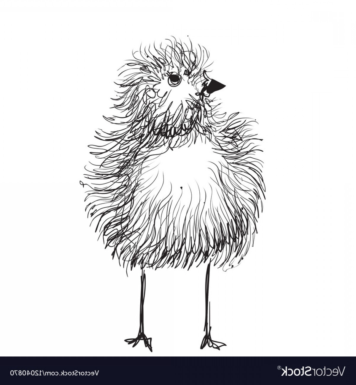 Chicken Vector Black: Hand Drawn Pencil Graphics Chicken Chick Vector