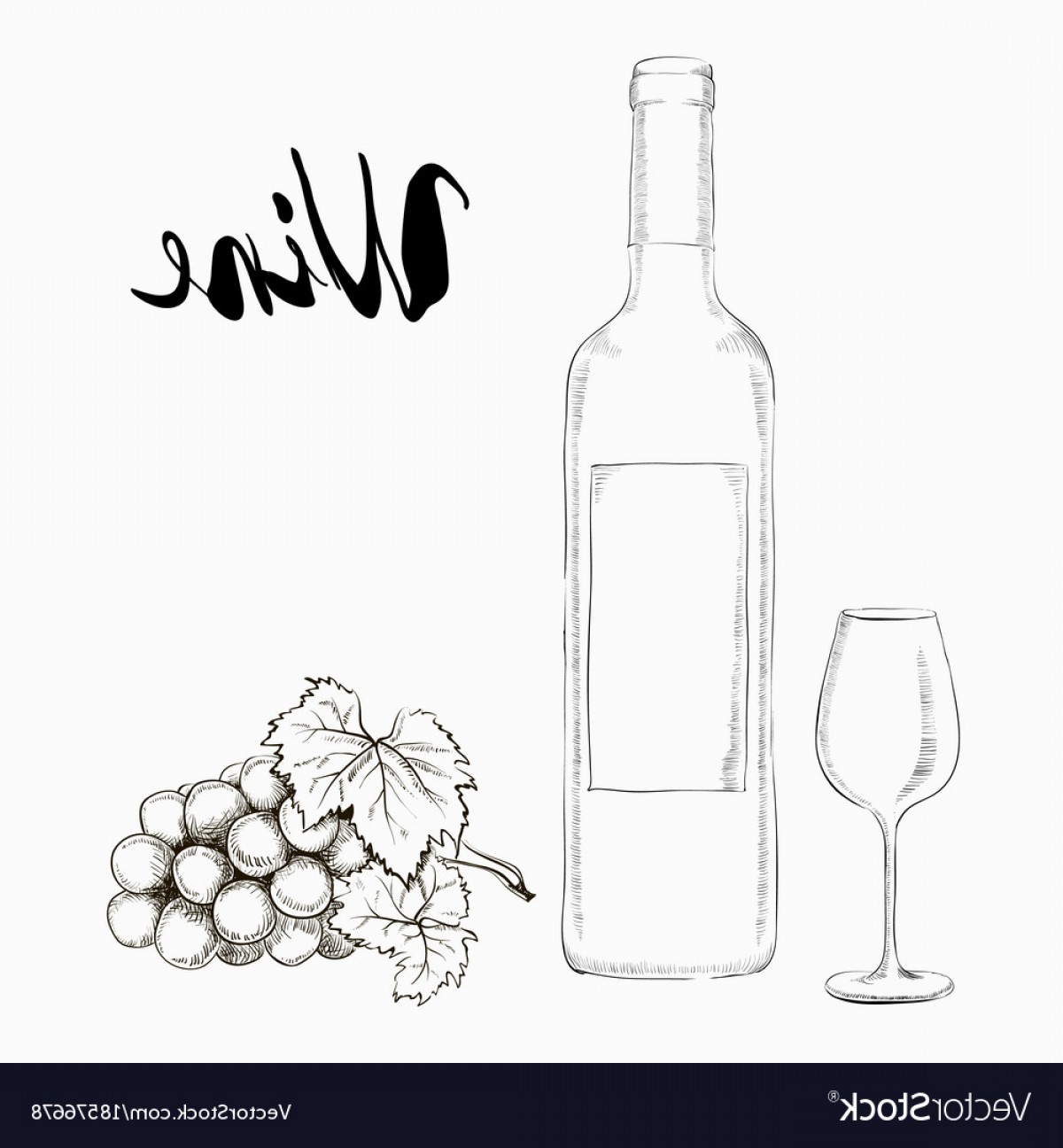 Wine Bottle Vector Line Art: Hand Drawn Wine Glass And Bottle Vector