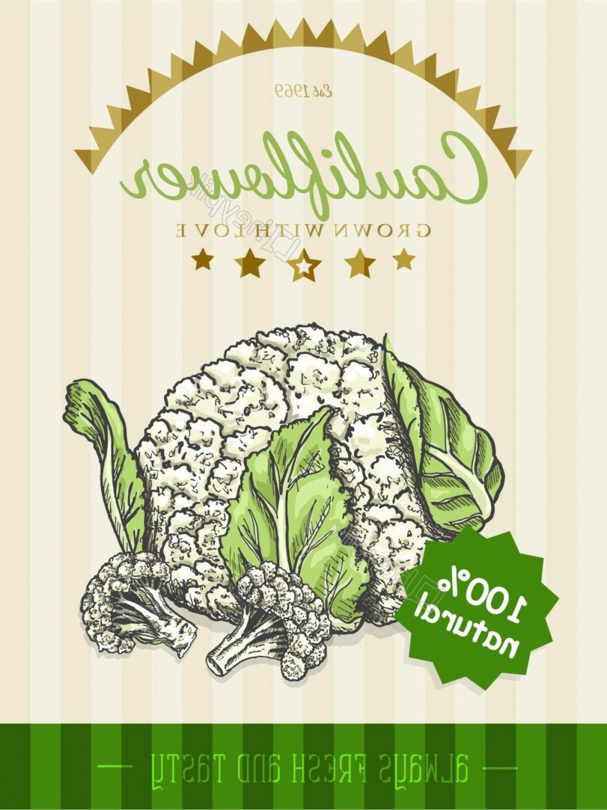 Vectores Para Descargar Gratis: Hand Painted Cauliflower Poster Vector Material To Download