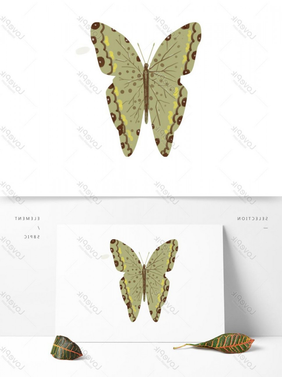 Mariposa Vector: Hand Painted Vector Insect Butterfly Transparent Bottom Can Be C