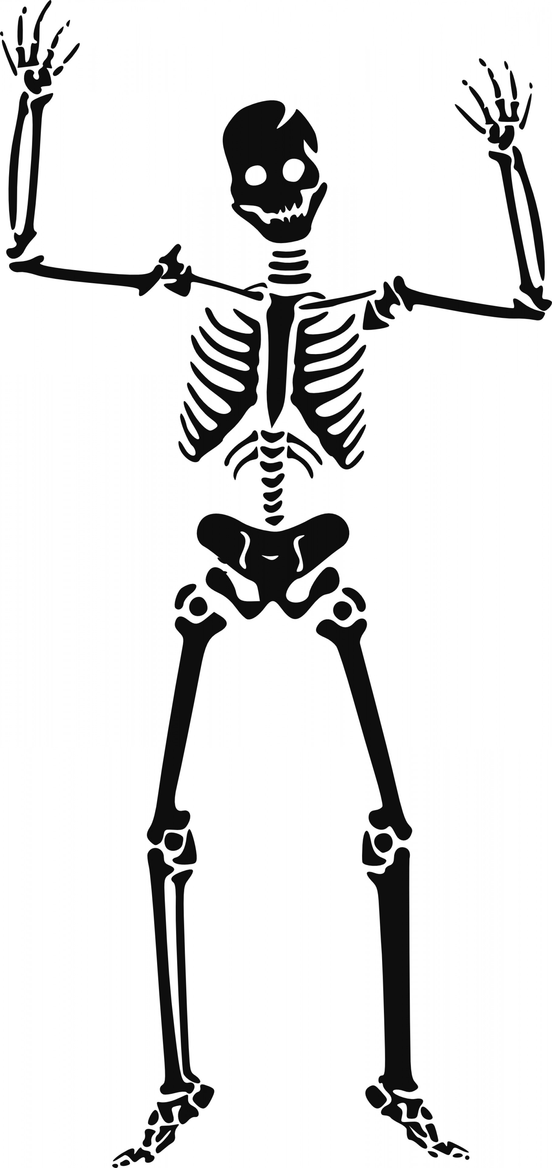 Headless Scary Halloween Skeletons Vectors: Happy Skeleton Free Halloween Vector Clipart Illustration