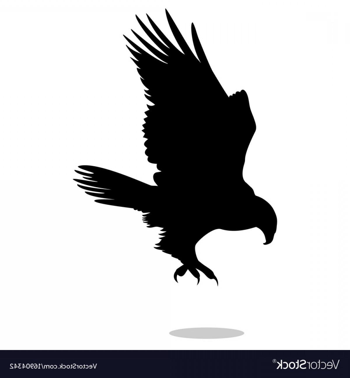 Falcon Silhouette Vector: Hawk Eagle Falcon Bird Black Silhouette Animal Vector