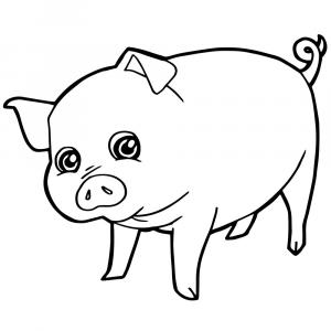 Cute Pig Vector Black And White: Hand Drawn Cute Pig Sketch Illustration