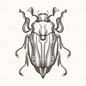 Bug Vector Art: Googly Eyed Lady Bug Gm