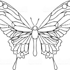 Butterfly Vector Outline Black: Abstract Polygon Butterfly Vector Black Geometric