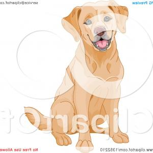 Yellow Labrador Retriever Vector: Happy Yellow Labrador Retriever Dog Sitting