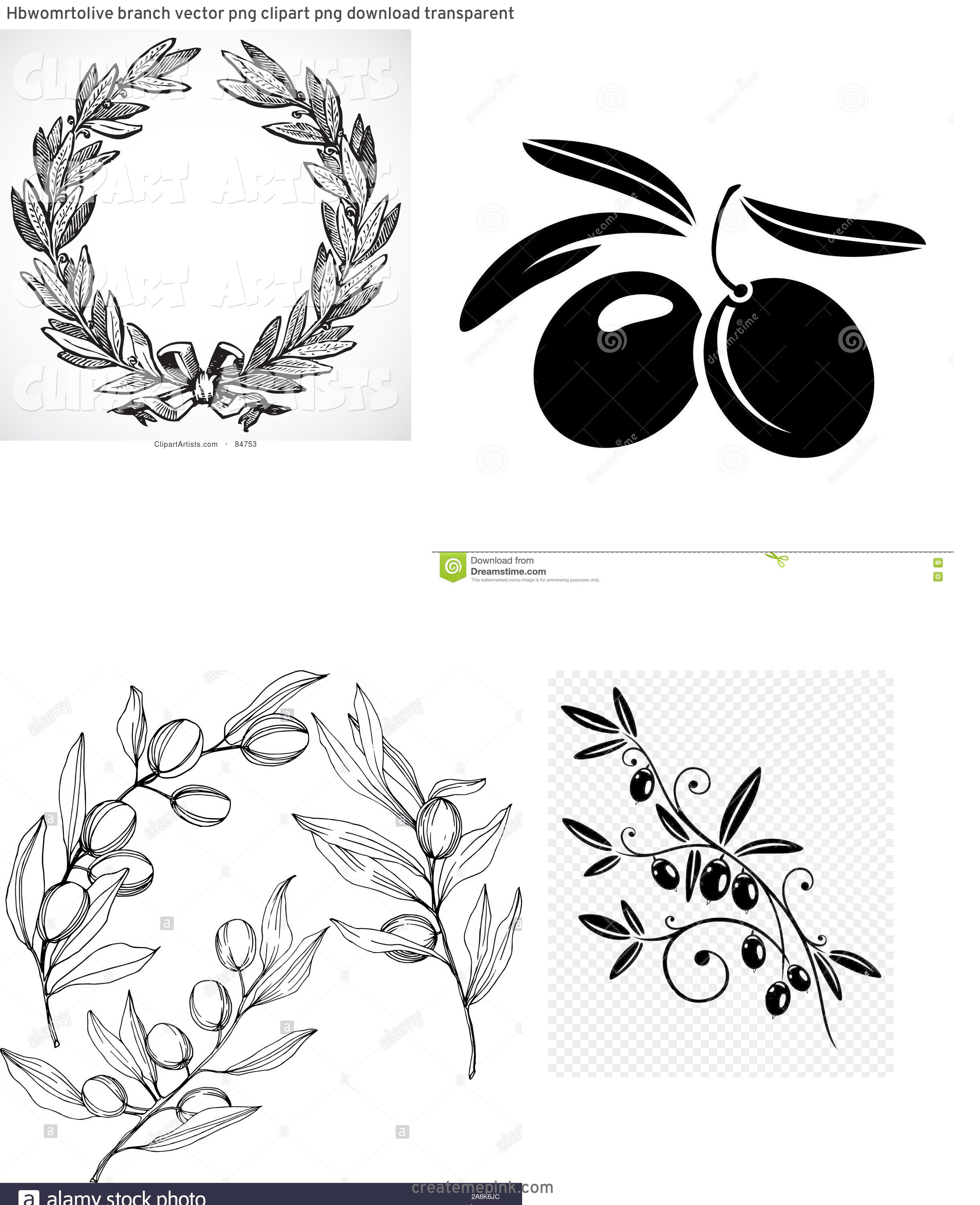 Olive Black And White Vector Leaves: Hbwomrtolive Branch Vector Png Clipart Png Download Transparent