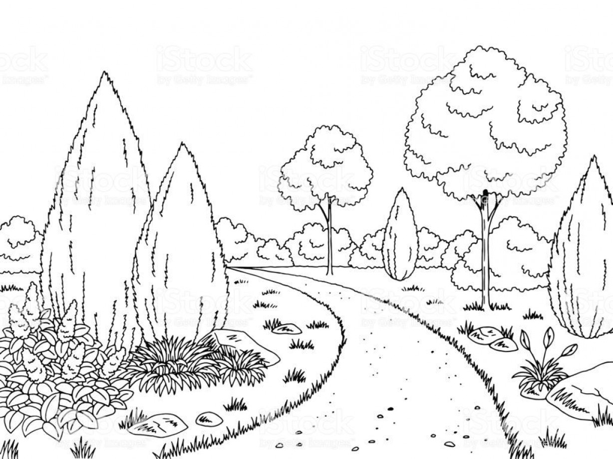 Black And White Vector Image Of Weed Plants: Hd Cartoon Black And White Garden Vector Photos