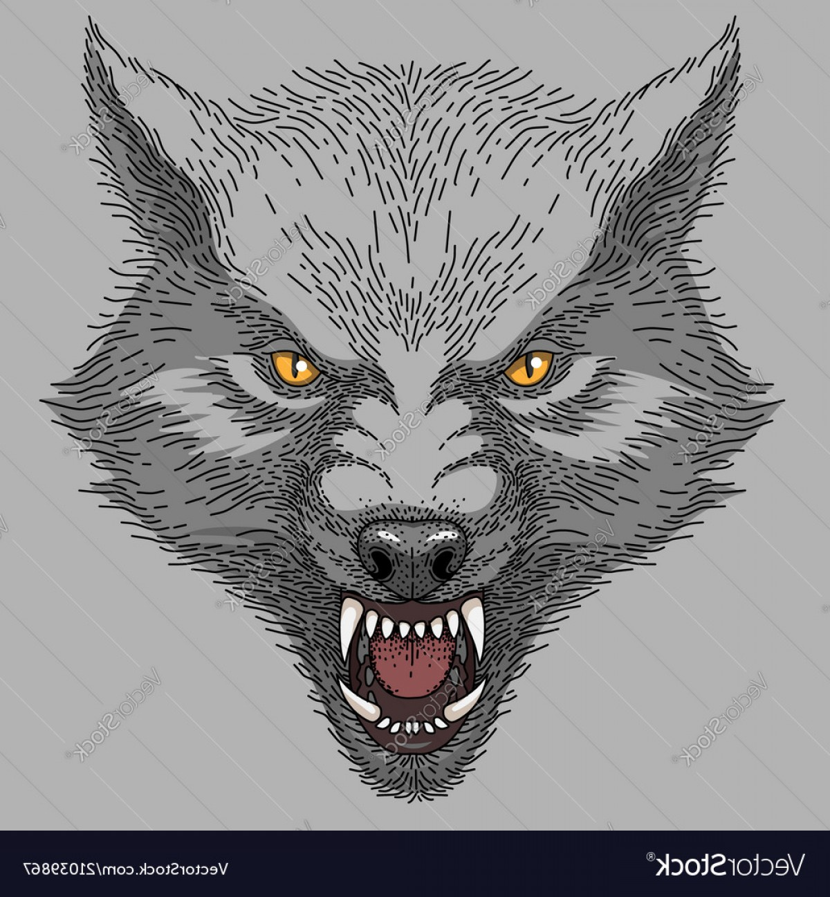 Calm Wolf Vector: Head Of Angry Wolf Vector