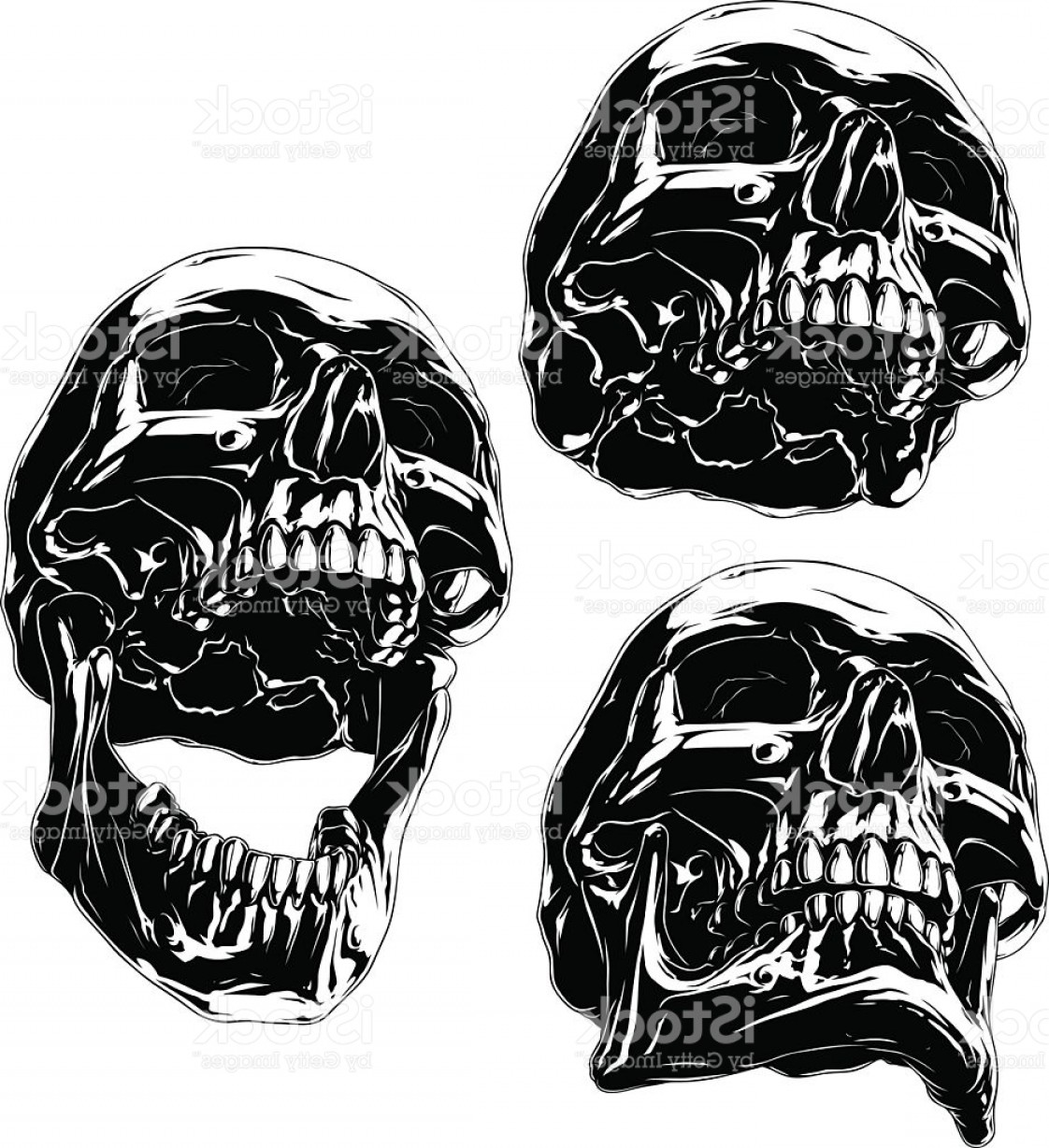 Cool Skull Vector: High Detailed Cool Black Human Skull Set Gm
