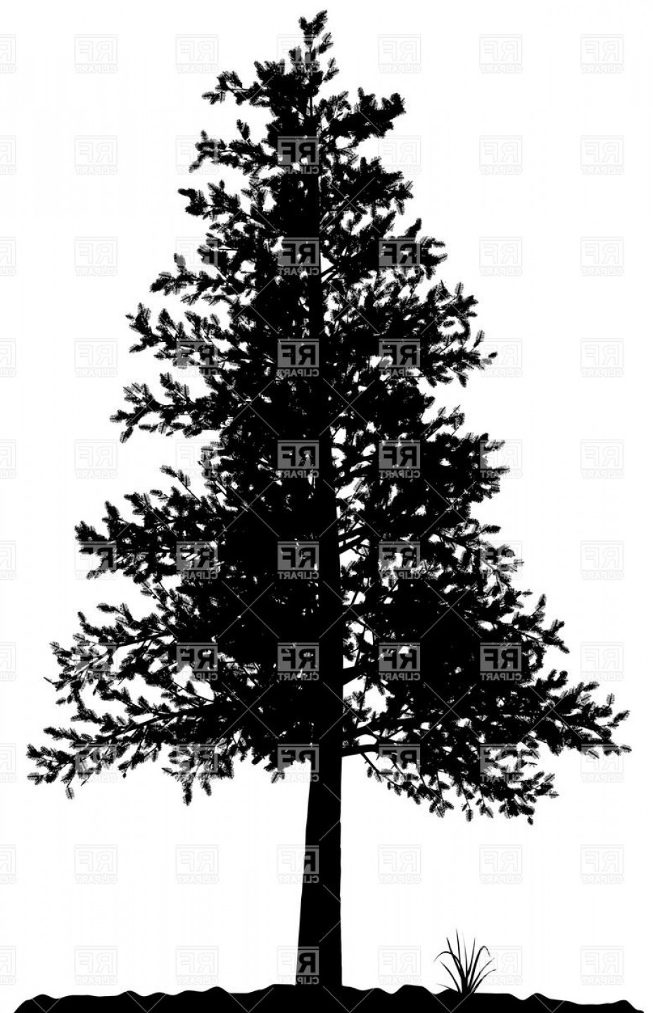 Tree Silhouette Vector Clip Art: High Detailed Pine Tree Silhouette On White Background Vector Clipart