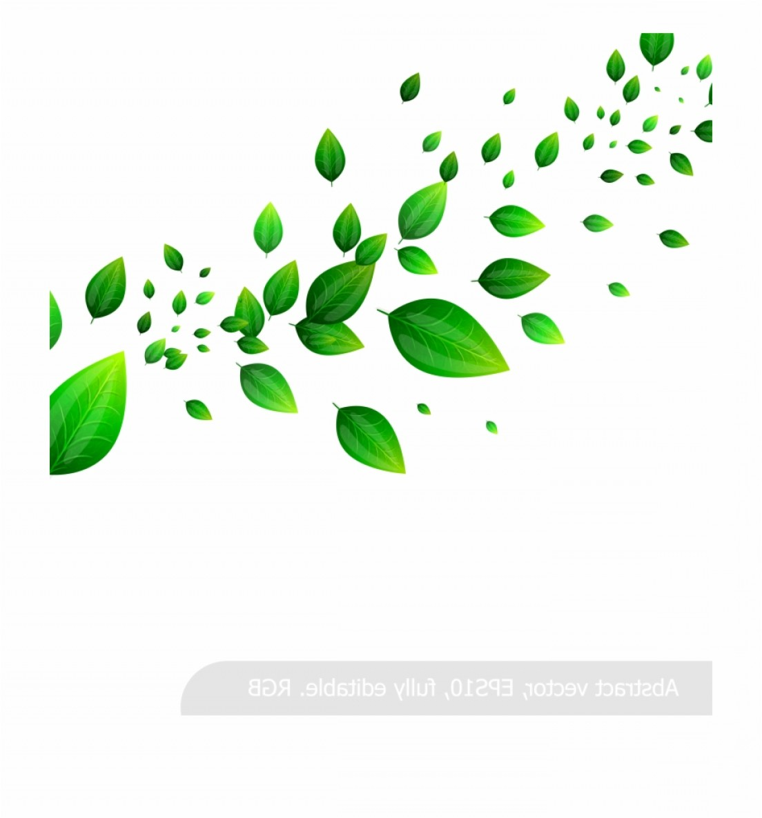 Vector Leaf Graphicd: Hjtbrrleaf Leaves Material When Vector Green Fresh Clipart
