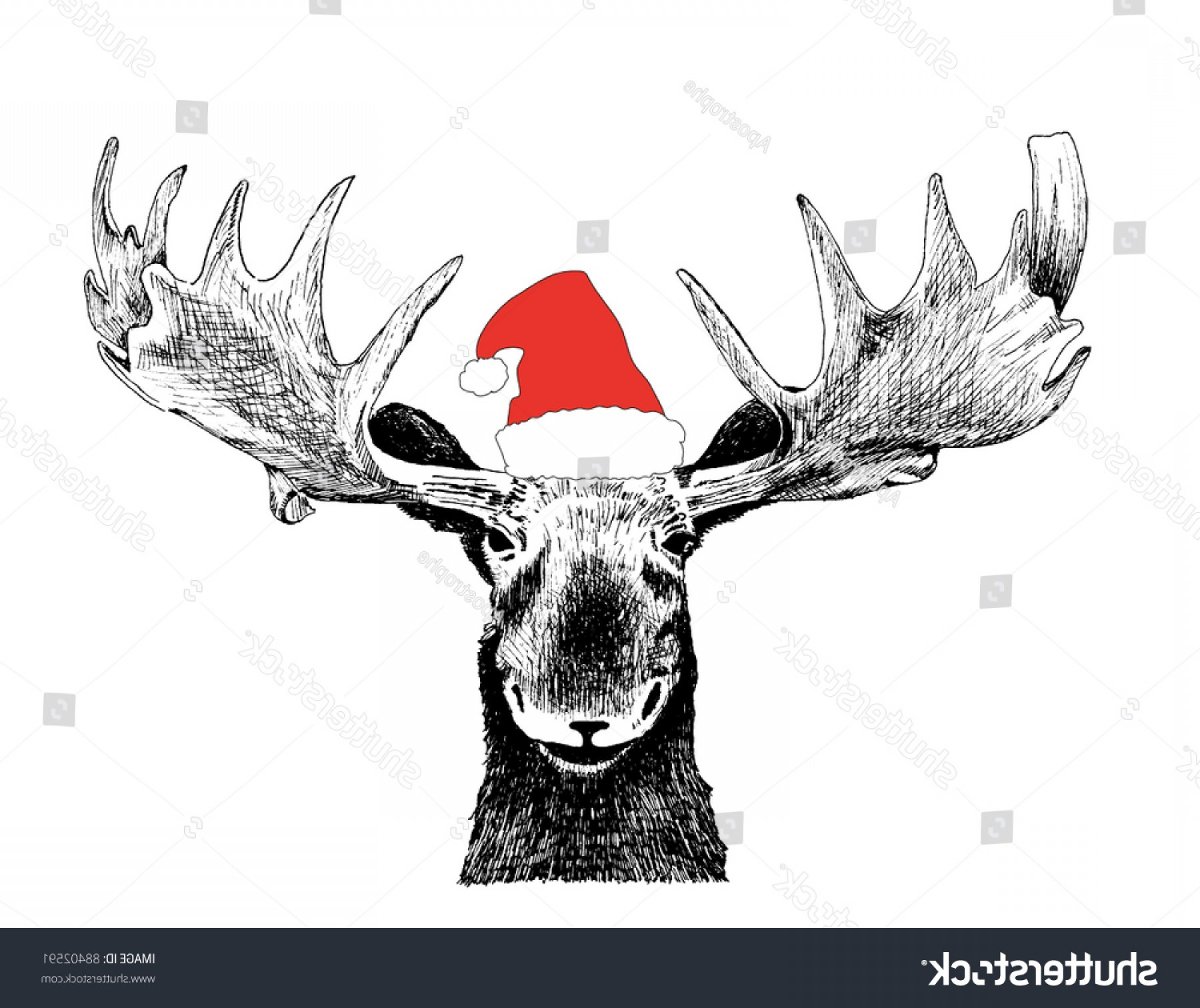 Black And White Holiday Deer Vector: Holiday Vector Black Ink Hand Drawn