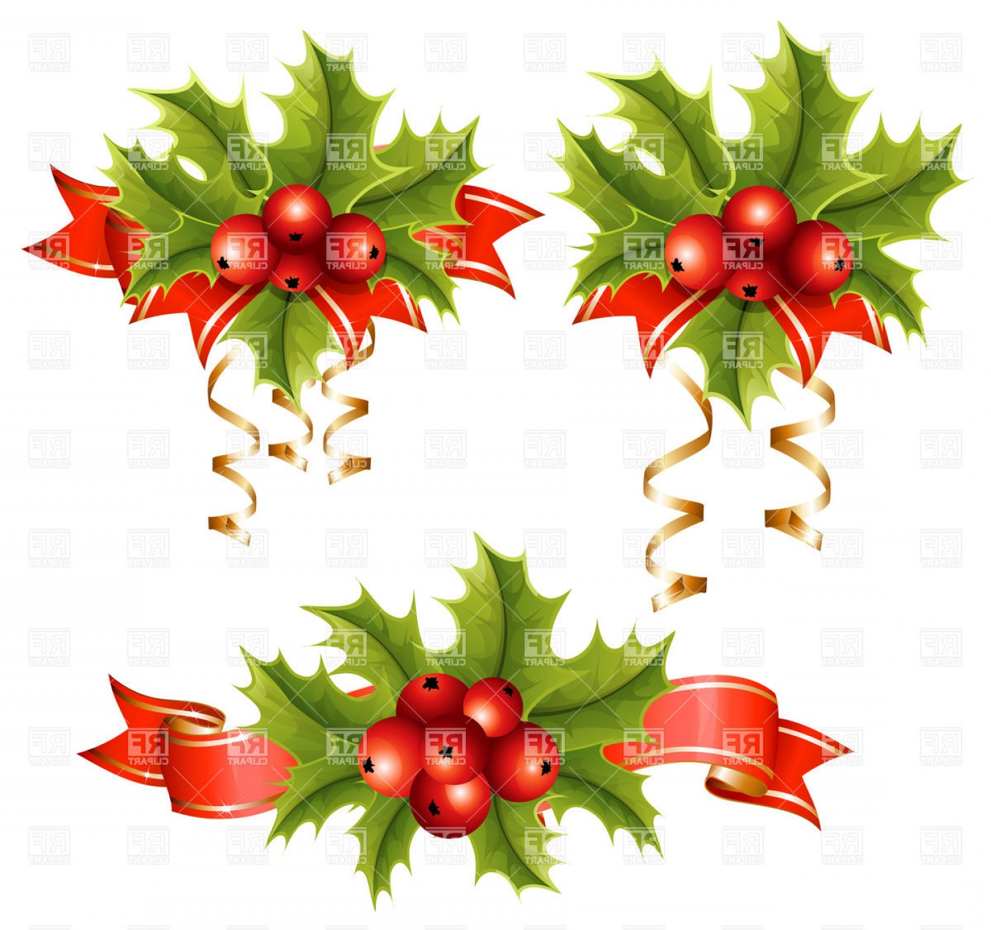 Holly Berry Vector Border: Holly With Berries Vector Clipart