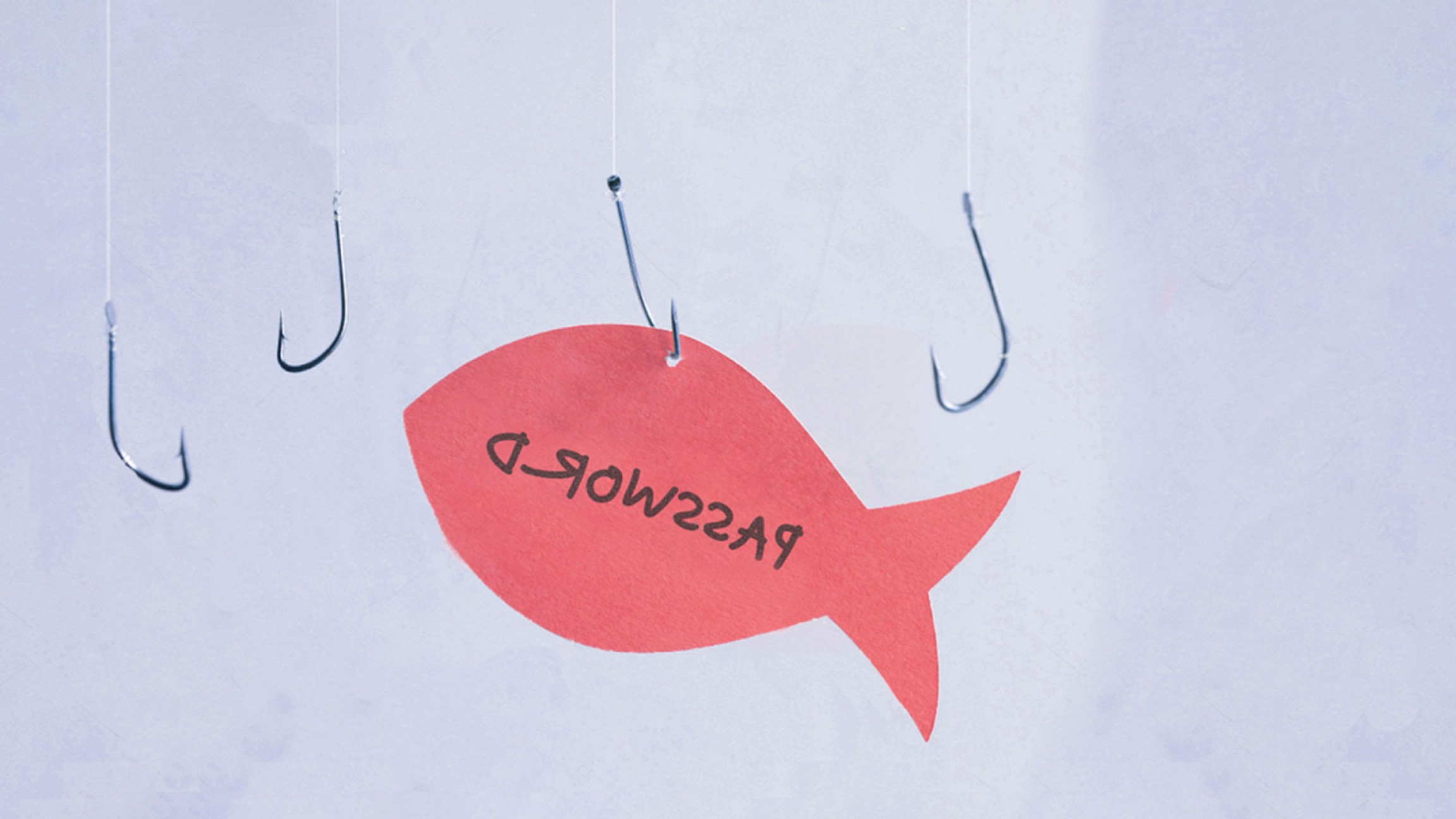 Heard Fishing Hook Vector: How Good Are You At Detecting A Phishing Attack