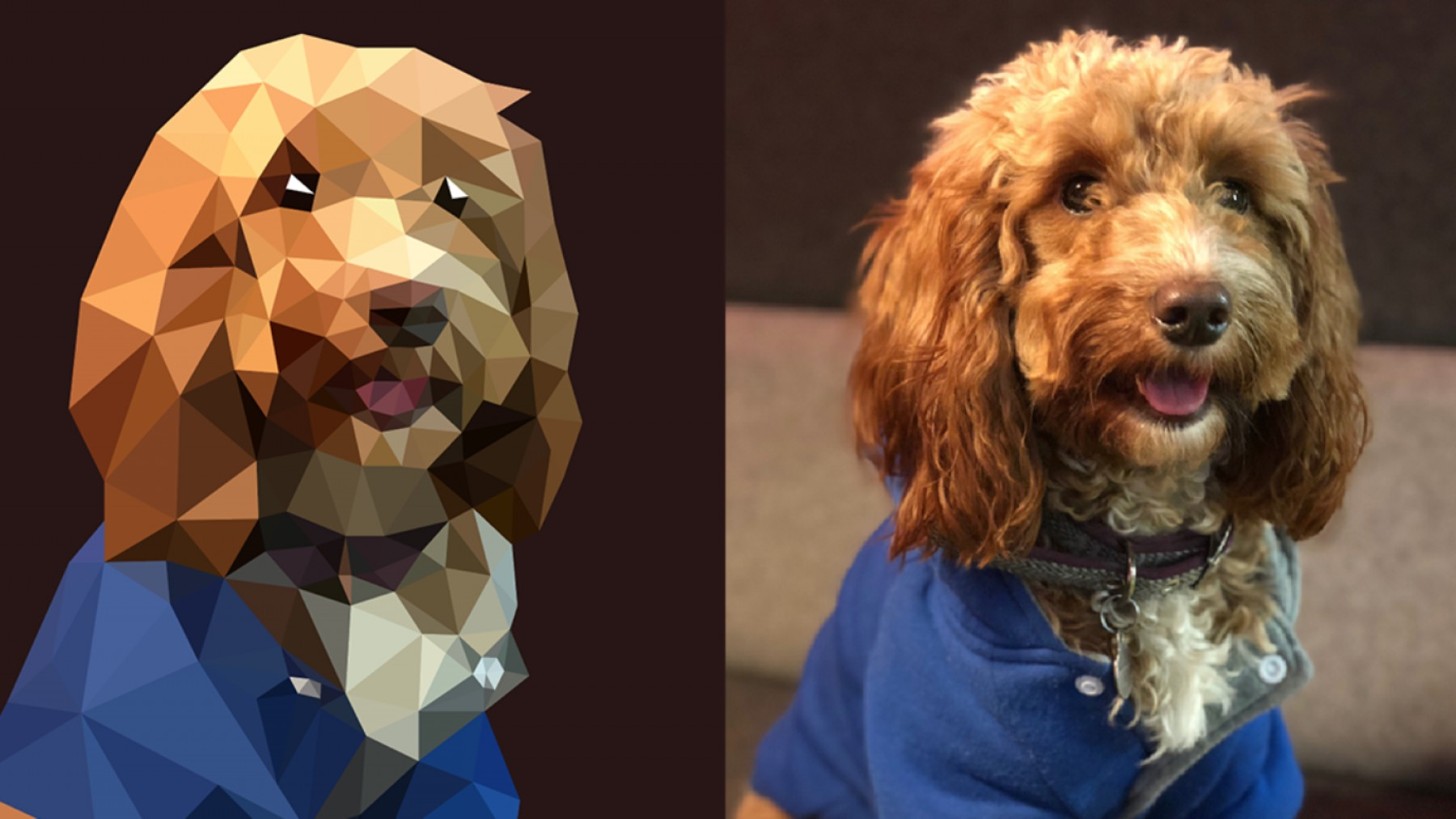 Goldendoodle Vector SVG: How To Create Low Poly Art In Adobe Illustrator