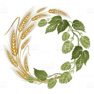 Hops Vector Art: Hops And Wheat Illustration For Beer Label Gm